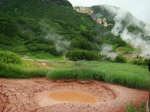 Kamchatka, the Valley of Geysers Stock Images