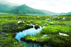 Kamchatkian landscapes Royalty Free Stock Photography