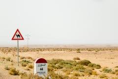 Kameel die verkeersteken in Tunesië, Afrika kruisen stock foto's
