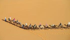 Kameelbestuurder met de caravan van de toeristenkameel in woestijn Stock Foto's