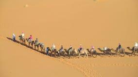 Kameelbestuurder met de caravan van de toeristenkameel in woestijn Royalty-vrije Stock Foto