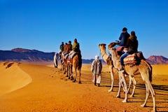 Kameelcaravan in de woestijn van de Sahara, Marokko Concept reis en exotische avonturen stock fotografie