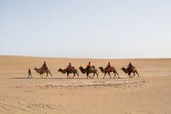 Kameelcaravan die door de zandduinen gaan in de Woestijn van Gobi, C Royalty-vrije Stock Foto
