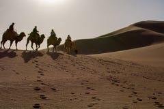 Kameelcaravan die door de zandduinen gaan in de Woestijn van Gobi, C Stock Afbeelding