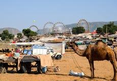 Kameelmarkt, Pushkar, Rajasthan, India stock fotografie