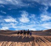 Kameeltrekking in de Westelijke Sahara, Marokko Royalty-vrije Stock Fotografie