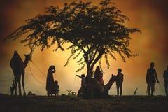 Kameelverkopers van de stad van Pushkar, Pushkar Mela Royalty-vrije Stock Foto