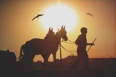 Kameelverkopers van de stad van Pushkar, Pushkar Mela royalty-vrije stock foto's