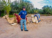 Kamelägaren erbjuder ritter på en kameltaxi arkivfoton