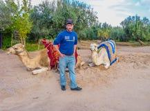 Kamelägaren erbjuder ritter på en kameltaxi Royaltyfria Foton