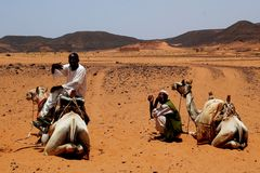 Kamel-Anleitungen in Sudan Lizenzfreies Stockfoto