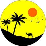 Kamel auf dem Strand lizenzfreie abbildung