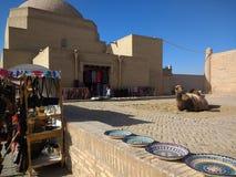 Kamel in der alten Stadt von Khiva Usbekistan lizenzfreies stockbild