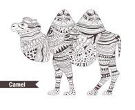 Kamel för färgläggningdiagram för bok färgrik illustration stock illustrationer