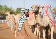 Kamel för klubba för springa för Dubai kamel som väntar för att springa med vårdaren Royaltyfria Bilder