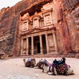 Kamel framme av kassan på Petra den forntida staden Al Kh Fotografering för Bildbyråer