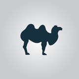 Kamel-Ikone auf grauem Hintergrund stock abbildung
