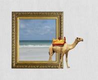 Kamel im Rahmen mit Effekt 3d Stockbild