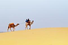 Kamel mit Leuten auf Sanddünen Stockbilder