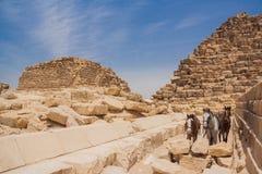Kamel och Giza pyramider Fotografering för Bildbyråer