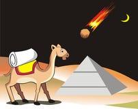 Kamel och meteorit Arkivbild