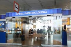 Kamel som röker vardagsrummet med passagerare inom i Munich Internatio Royaltyfri Bild