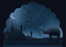 Kamel till och med öken stock illustrationer