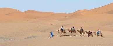 Kamel-Wohnwagen stockbilder