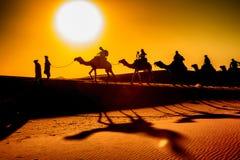 Kamel-Wohnwagen lizenzfreie stockbilder