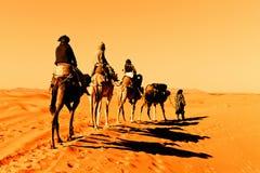 Kamel-Wohnwagen in der Sahara-Wüste Stockfotografie