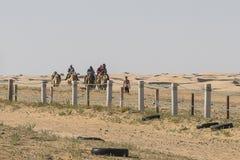 Kamel-Wohnwagen in der Sahara-Wüste Lizenzfreie Stockfotos