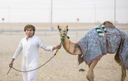 Kamele im Unebenheitsal Khali Desert am leeren Viertel, in Abu Dhabi Stockbilder