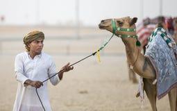 Kamele im Unebenheitsal Khali Desert am leeren Viertel, in Abu Dhabi Stockbild