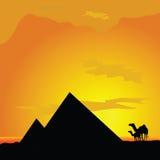 Kamele mit pyramide in der Wüstenillustration Stockfotografie