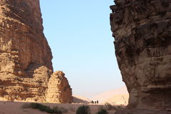 Kamele in Wadi Rum Lizenzfreie Stockbilder