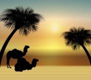 Kamelen bij Zonsopgang Vector Illustratie