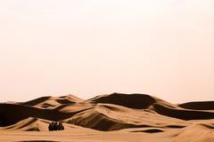 Kamelen in de woestijn Royalty-vrije Stock Afbeelding
