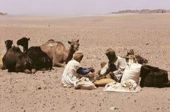 Kamelen en mensen Stock Afbeeldingen