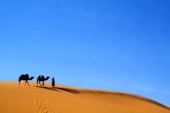 Kamelen en touareg Royalty-vrije Stock Afbeelding