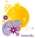 kameleonów kwiaty Zdjęcie Stock