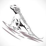 Kameleon jaszczurka Zdjęcia Royalty Free