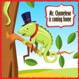 Kameleon kreskówki śmieszny zwierzęcy wektor Fotografia Stock