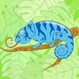 Kameleon op een tak tegen bladeren, vectorillus Royalty-vrije Stock Afbeeldingen