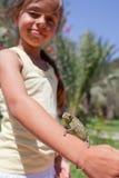 Kameleon op hand royalty-vrije stock afbeeldingen