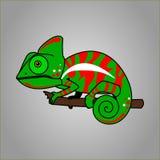 Kameleon zieleni I rewolucjonistki kreskówka Obraz Stock