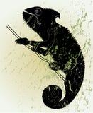 kameleont Royaltyfri Illustrationer