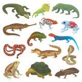 Kameleont för djurt djurliv för ödla för vektorreptilnatur lös, orm, sköldpadda, krokodilillustration av reptilianen stock illustrationer