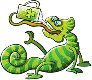 Kameleont för helgonPatricks dag som dricker öl Royaltyfri Fotografi