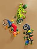 kameleonter Arkivfoto
