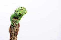 Kameleontlera Arkivfoton